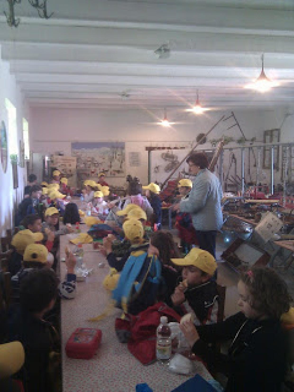 Visita alla fattoria degli alunni della scuola di Conselve