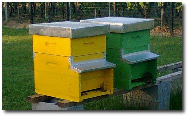 Perch non diventare apicoltore la masseria di polverara for Tipi di prestiti per la costruzione di una casa