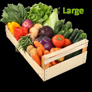 cassetta verdure large