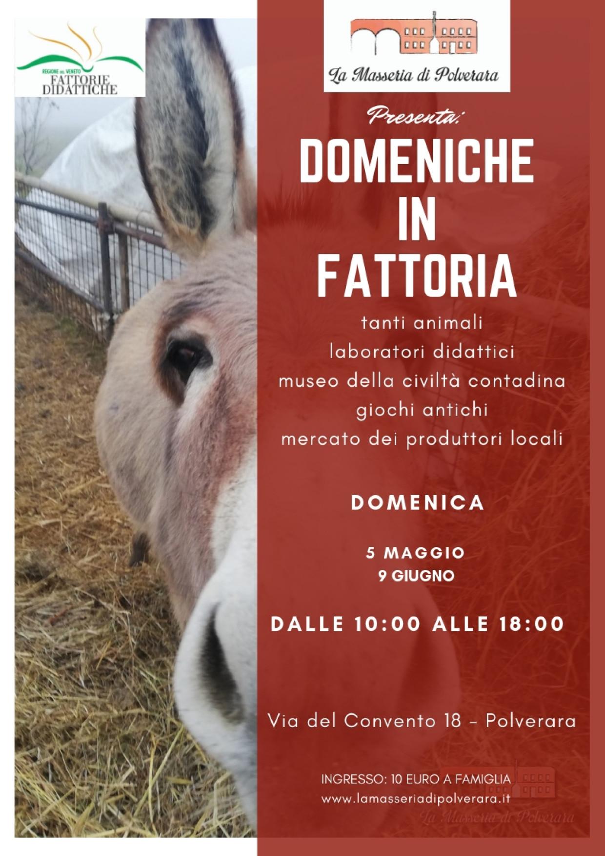 Domenica in Fattoria – 5 Maggio