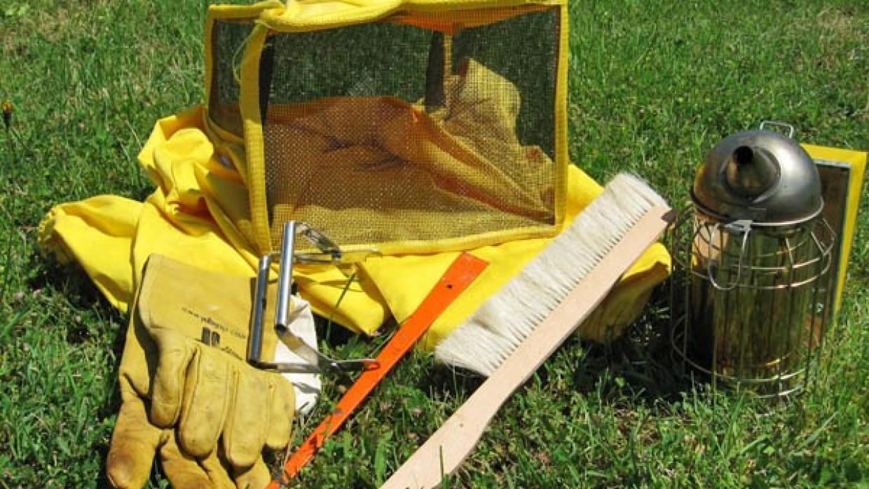 Gli strumenti minimi e i relativi costi per iniziare a fare apicoltura