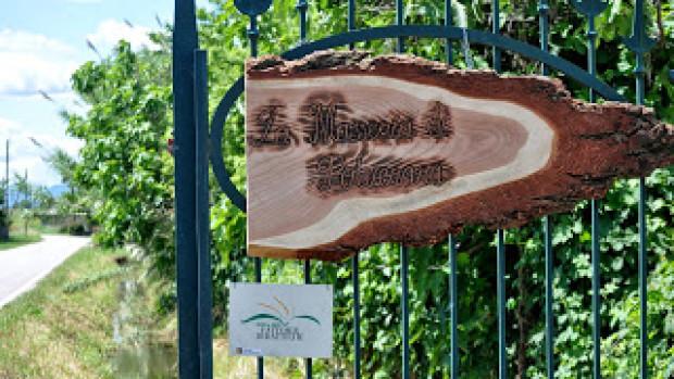 Fattoria didattica 2017: 712 bambini ospiti della Masseria di Polverara