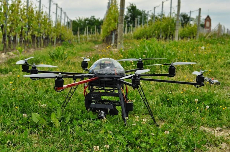 Due progetti per l'agricoltura di domani: Droni e Insetti – Parte 1
