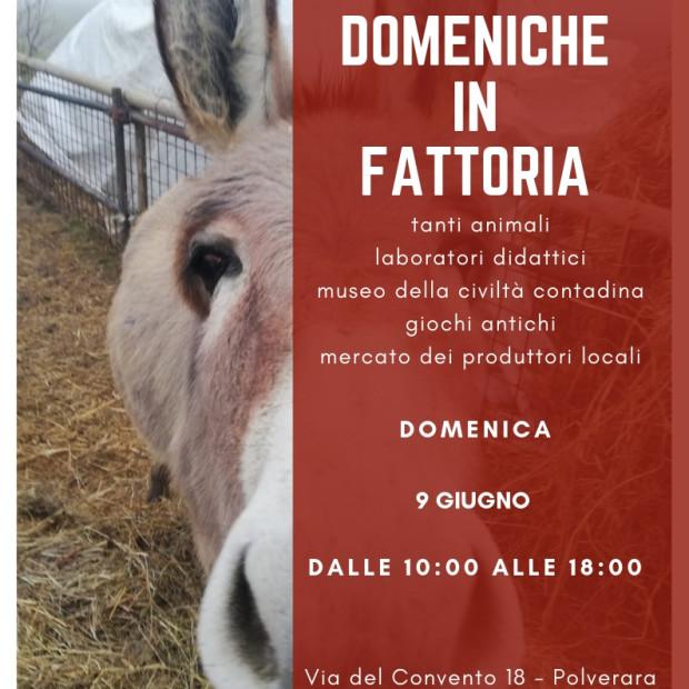 Domenica in Fattoria – 9 Giugno