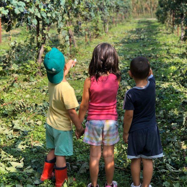 Crescere in Masseria